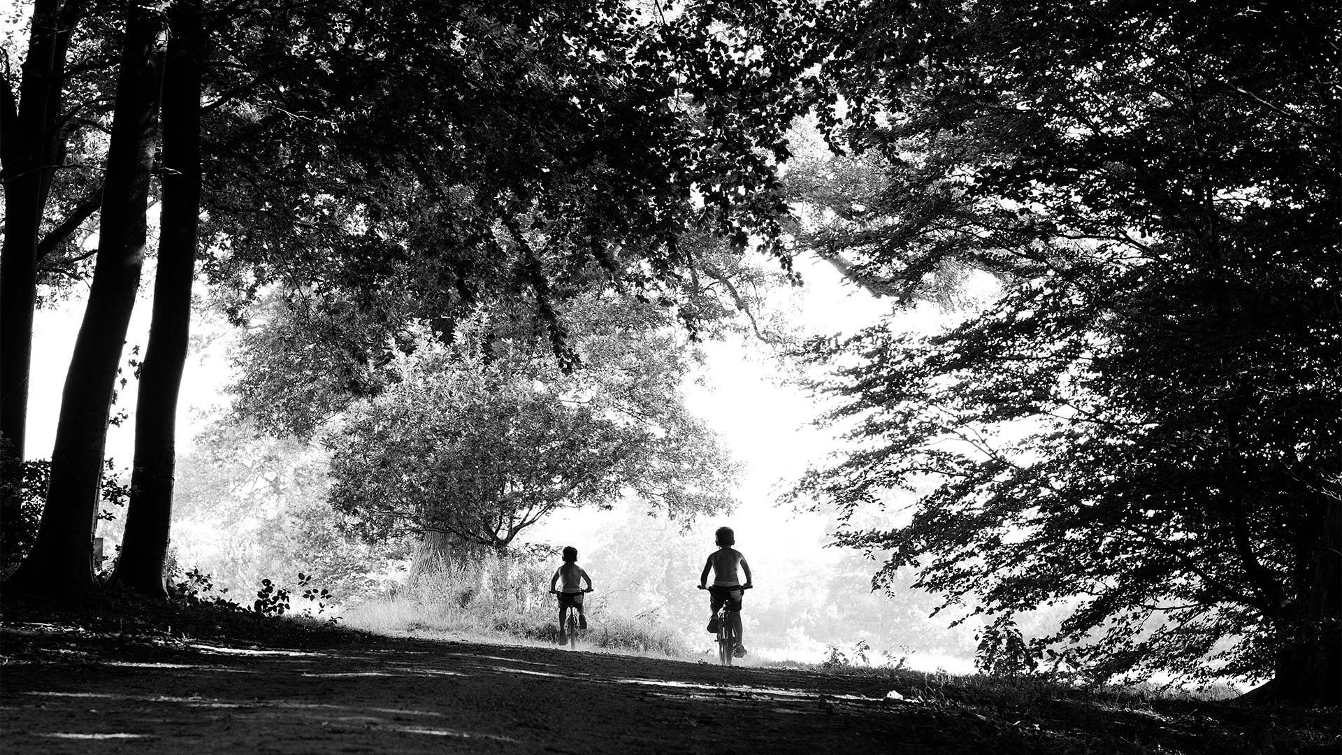 Children ride bikes through trees.
